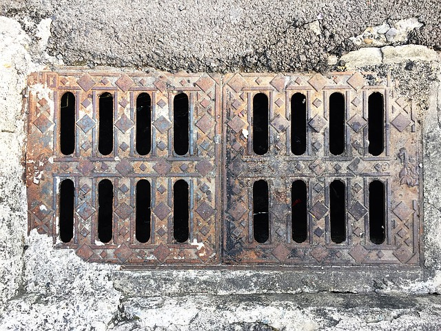 wybór kanalizacji